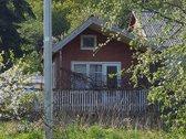 Parduodamas sodas Kauno mieste! - nuotraukos Nr. 2